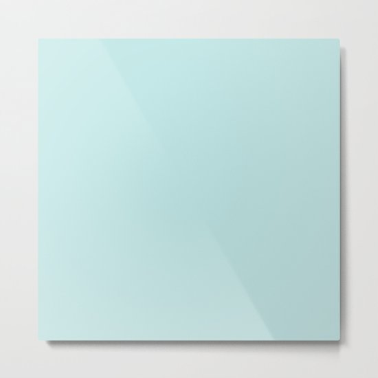 Simply Succulent Blue Metal Print