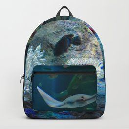 Sting Ray Backpack