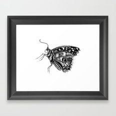 Pretty Fly For A Butterfly Framed Art Print