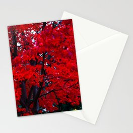 Red Maple leaves Stationery Cards