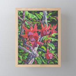 Hanging Fuchsia Framed Mini Art Print