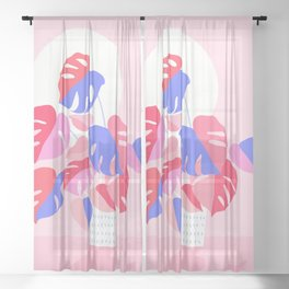 Pretty Monstera Plant in blue and pink Sheer Curtain