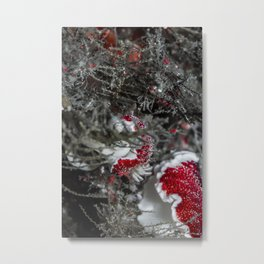 Strawberry nudi laying an egg ribbon Metal Print