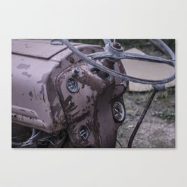 An Old Dog's Days- Color Canvas Print