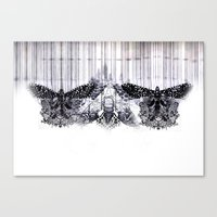 insects Canvas Prints featuring insects by Alexandra Tamas