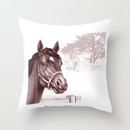Stare of The Stallion Throw Pillow