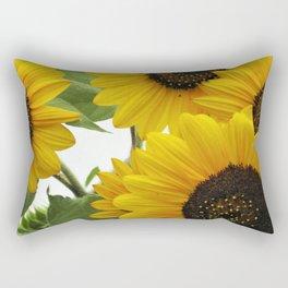 Sun Burst Rectangular Pillow