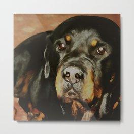 Dogs Lover Rottweiler Pet Portrait Metal Print