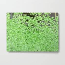 Floating Nature Metal Print