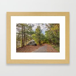 Heart of the woods Framed Art Print