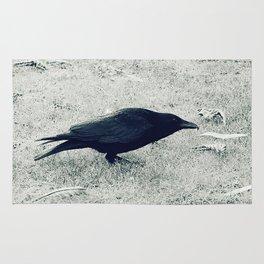 dark crow Rug
