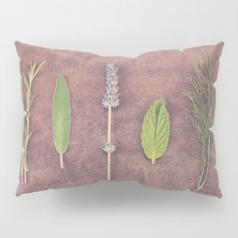 Herbs Pillow Sham
