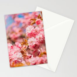 Spring Flowers | Cherry Blossoms Stationery Cards