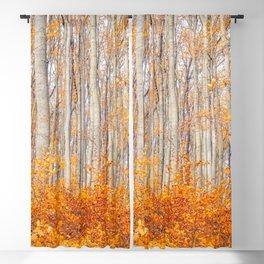 orange autumn Blackout Curtain