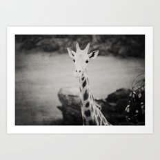 The Curious Giraffe Art Print