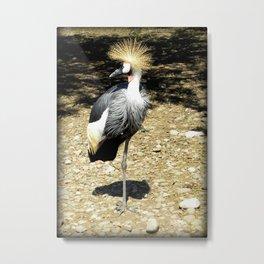 Lake Tobias: Strike A Pose Metal Print
