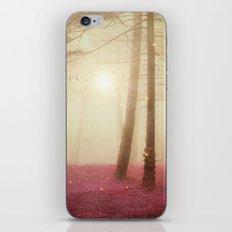 A new beginning VII iPhone & iPod Skin