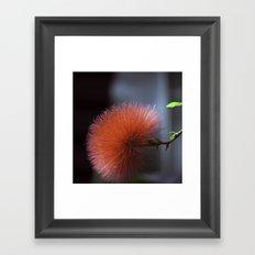A Sticky Wicket  Framed Art Print