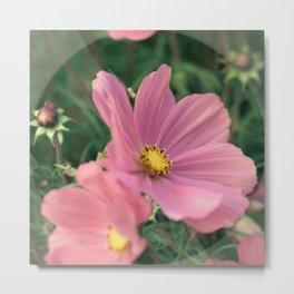 Wild flower in pink Metal Print