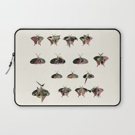 Collection of Butterflies Laptop Sleeve