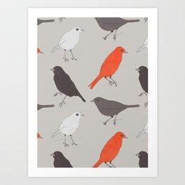 Little Birds Art Print