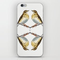 Tree pipit iPhone & iPod Skin