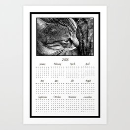 2013 Calendar - Black and White Tabby Cat Photography Art Print