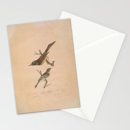 JP Giroud - North American birds (1841) - Lawrence's Flycatcher & Buffbreasted Flycatcher Stationery Cards