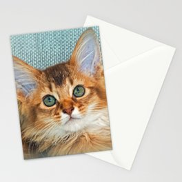 KITTEN POSE Stationery Cards