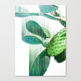 Faster than the speed of CACTUS Canvas Print