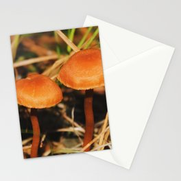 TinyShrooms Stationery Cards