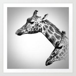 Giraffes Black And White Art Print