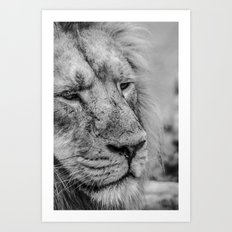 Face Of Thought Art Print