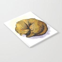 Cat Nap Notebook