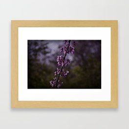 Exhale Into Vision Framed Art Print