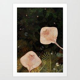 Baby Rays Art Print