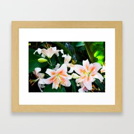 lilies and leaves Framed Art Print