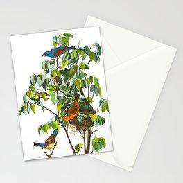 Blue Grosbeak Bird Stationery Cards