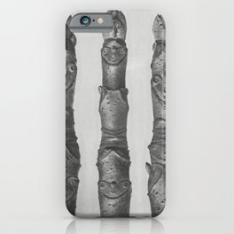 Aesculus parviflora (Horse-Chestnut) yong shoots enlarged 12 times from Urformen der Kunst (1928) by iPhone Case