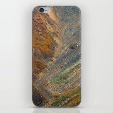 electric scree iPhone & iPod Skin