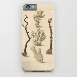 Naturalist Coral iPhone Case