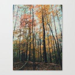 Mississippi Fall Canvas Print