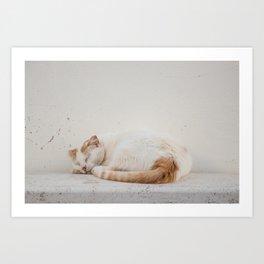 Cat of Burgau Art Print