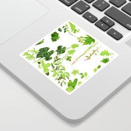 Rainforest Foliage Sticker