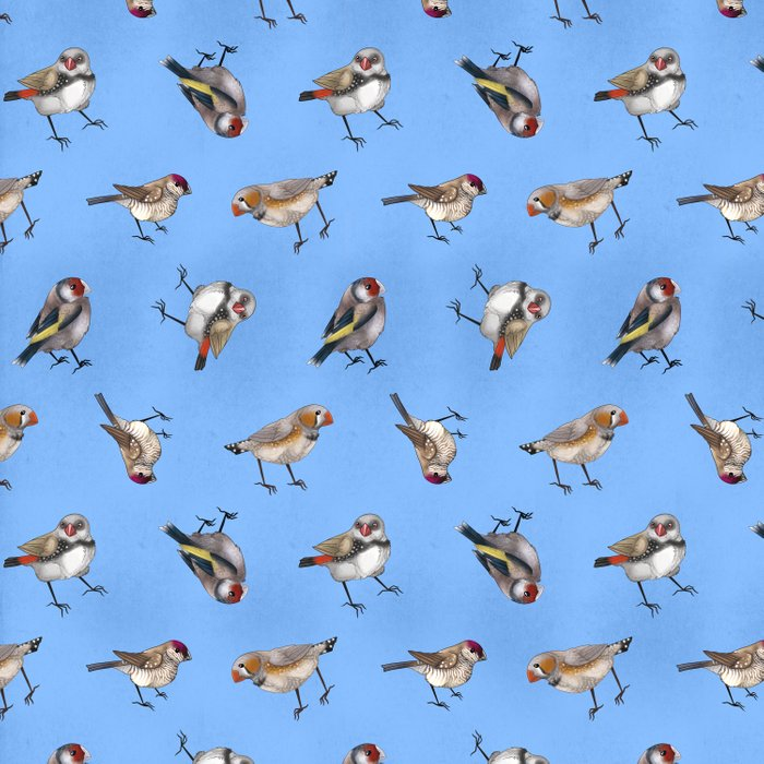 Finches in Blue Comforters