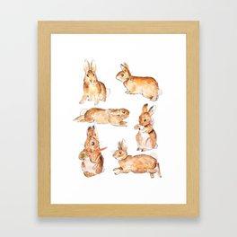 Bunnies in Tales of Peter Rabbit  characters Beatrix Potter Framed Art Print