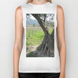 Olive tree in vineyard Biker Tank
