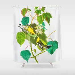 Hemlock Warbler Bird Shower Curtain