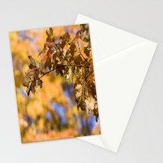 Orange Backdrop Stationery Cards