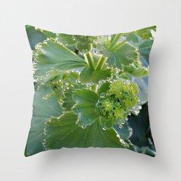 Ladies Mantle Throw Pillow